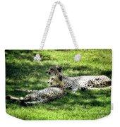 The Cheetahs Weekender Tote Bag