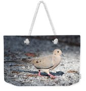 The Chipper Mourning Dove Weekender Tote Bag