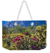 The Colorful Desert  Weekender Tote Bag