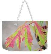 The Colors Of Shumac 2 Weekender Tote Bag
