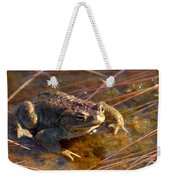 The Common Toad 1 Weekender Tote Bag