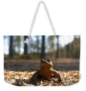 The Common Toad 3 Weekender Tote Bag