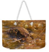 The Common Toads 2 Weekender Tote Bag