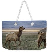 The Cow Elk Weekender Tote Bag