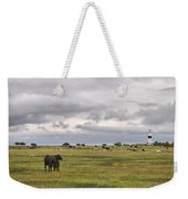 The Cows Of Ottenby 1 Weekender Tote Bag