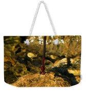 The Creek Weekender Tote Bag