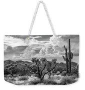 The Desert Speaks Weekender Tote Bag