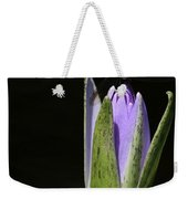 The Dragonfly And The Water Lily  Weekender Tote Bag