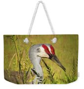 The Duo - Two Sandhill Cranes Weekender Tote Bag