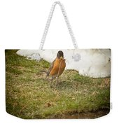 The Early Bird - Robin - Casper Wyoming Weekender Tote Bag