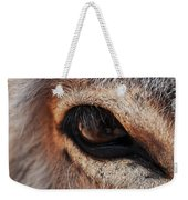 The Eye Of A Burro Weekender Tote Bag