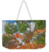 The Ferruginous Earth Of The Rocky Mountain West Weekender Tote Bag