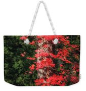 The First Maple Of Autumn Weekender Tote Bag