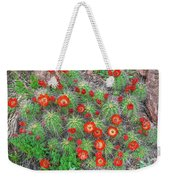 The First Week Of May, Claret Cup Cacti Begin To Bloom Throughout The Colorado Rockies.  Weekender Tote Bag