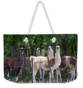 The Five Llamas Weekender Tote Bag