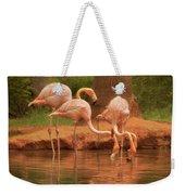 The Flock - The Serenity Of Flamingos At Water's Edge Weekender Tote Bag