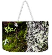 The Forest Floor Bluestone State Park West Virginia Weekender Tote Bag