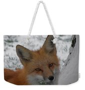 The Fox 4 Weekender Tote Bag