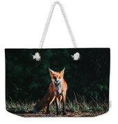 The Fox Weekender Tote Bag