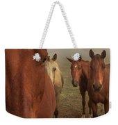The Gauntlet - Horses Weekender Tote Bag