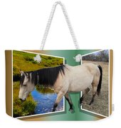 The Grass Is Always Greener On The Other Side Weekender Tote Bag