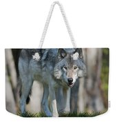 The Gray King... Weekender Tote Bag