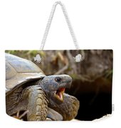 The Great Gopher Tortoise Weekender Tote Bag