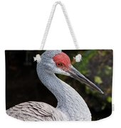The Greater Sandhill Crane Weekender Tote Bag