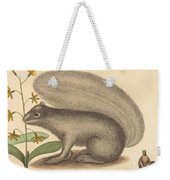 The Grey Fox Squirrel (sciurus Cinereus) Weekender Tote Bag