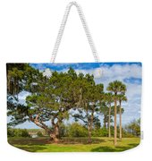 The Grounds Of The Kingsley Plantation Weekender Tote Bag
