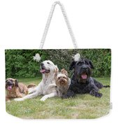 The Group Of Dogs Weekender Tote Bag