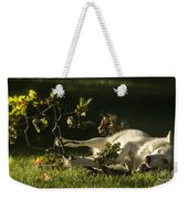 The Happy Wolf Weekender Tote Bag