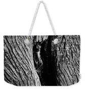 The Hermit In The Woods Weekender Tote Bag