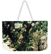 The Hidden Grave Weekender Tote Bag