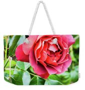 The Hot Cocoa Red Rose Weekender Tote Bag