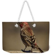 The House Finch Weekender Tote Bag