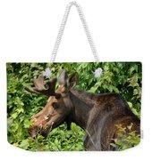 The Hungry Moose Weekender Tote Bag