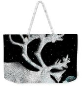 The Ice Garden Weekender Tote Bag by Eric Fan