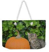 The Kitten And The Pumpkin Weekender Tote Bag