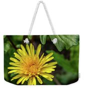The Lawn King Weekender Tote Bag