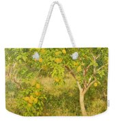 The Lemon Tree Weekender Tote Bag