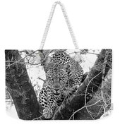 The Leopard's Stare Weekender Tote Bag