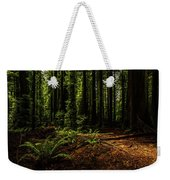 The Light In The Forest No. 2 Weekender Tote Bag