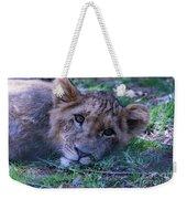 The Lion Cub Weekender Tote Bag