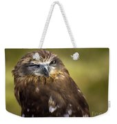 The Little Owl Weekender Tote Bag