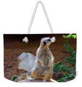 The Lookout - Meerkat Weekender Tote Bag