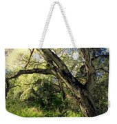 The Mighty Oaks Of Garland Ranch Park 1 Weekender Tote Bag