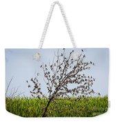 The More The Merrier- Tree Swallows  Weekender Tote Bag
