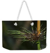 The Most Fabulous Spa..  Weekender Tote Bag