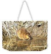 The Muskrat Weekender Tote Bag